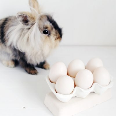 DIY Clay Egg Carton