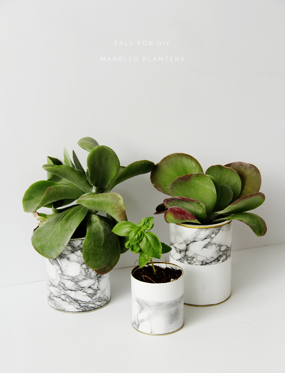 Diy Marble Planters Fall For Diy