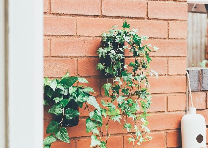 Upcycle these Planters in Minutes! DIY Outdoor Wall Planters
