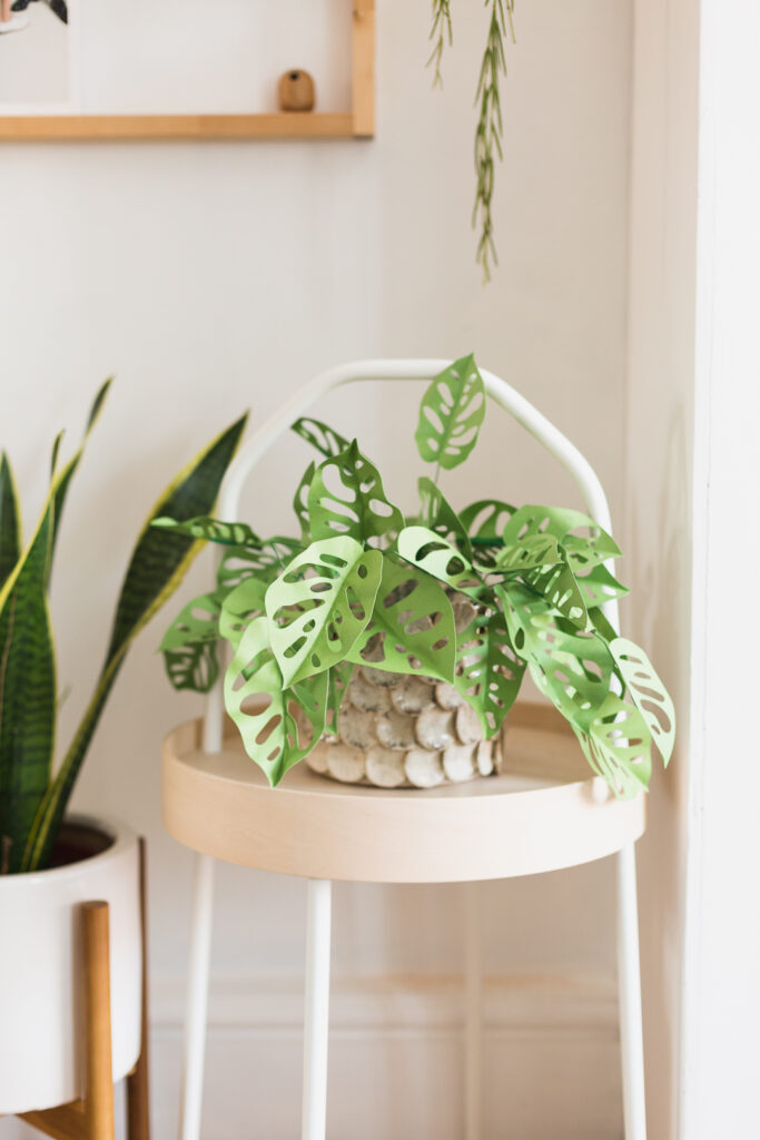 DIY Paper Cut Monkey Mask Plant in Planter