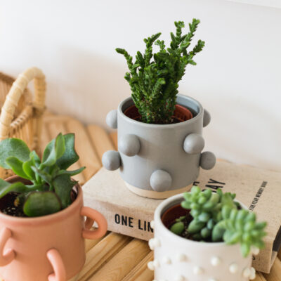 DIY Easy Planter Makeover