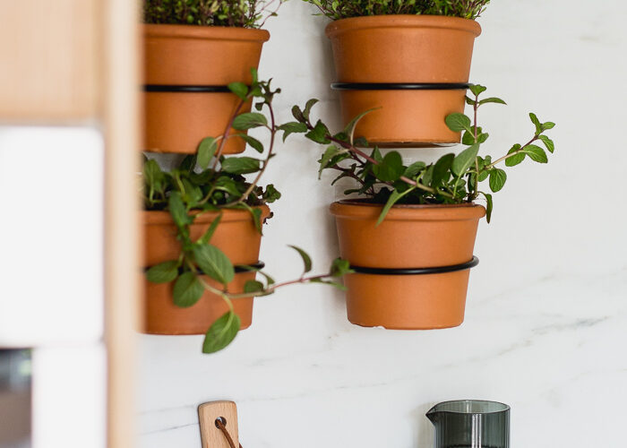 How to Make an Easy Indoor Herb Wall Garden